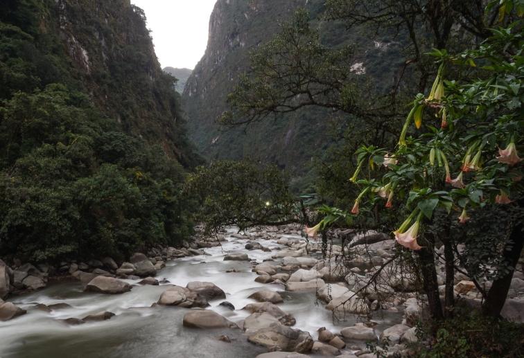 2016-05-04 ** Peru 2016 05 ** 1529