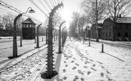 2017-01-22-krakow-green-day-150